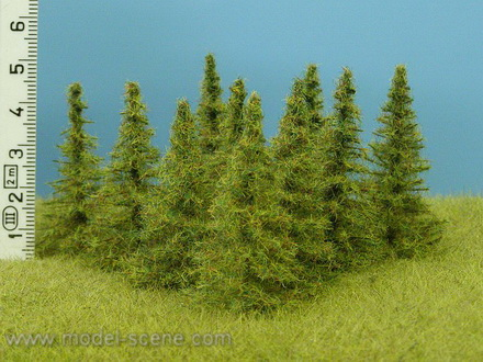 Larch 40-60 mm (9x)