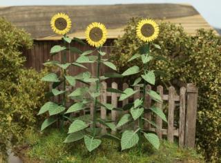 Sunflowers 1:32 / 1:35