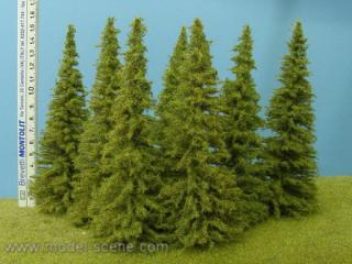 Larch 140-160 mm (3x)
