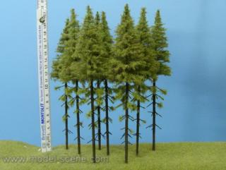 Larch  with trunk 180-220 mm (5x)