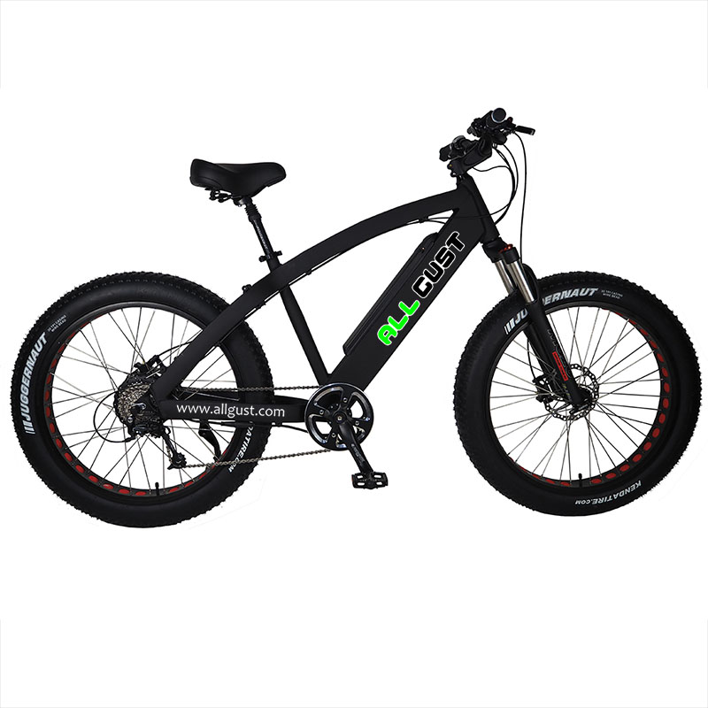 Electric bike type eb56